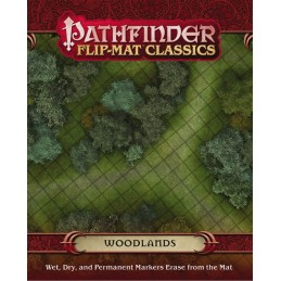 Pathfinder Flip-Mat...