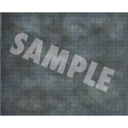 Pathfinder Flip-Mat Classics: Taverna sull'acqua