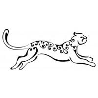 Maculati (Speckled)